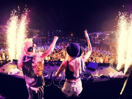 Nervo (click to view)